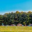 camping 3 étoiles emplacement dordogne