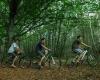 camping en dordogne pour vélo
