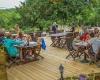 camping avec restaurant avec terrasse en dordogne