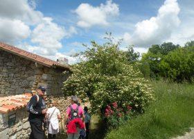 marche dans le parc naturel activité Périgord