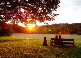 camping parc naturel périgord espace calme